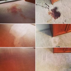 blood stain removal from carpets