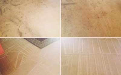 Rental House Carpet Cleaning Services Mornington